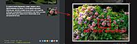 Нажмите на изображение для увеличения Название: Screenshot_40.jpg Просмотров: 0 Размер:106.0 Кб ID:13054