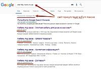 Нажмите на изображение для увеличения Название: sitehttpseno.in.ua - Поиск в Google.jpg Просмотров: 0 Размер:88.1 Кб ID:15262